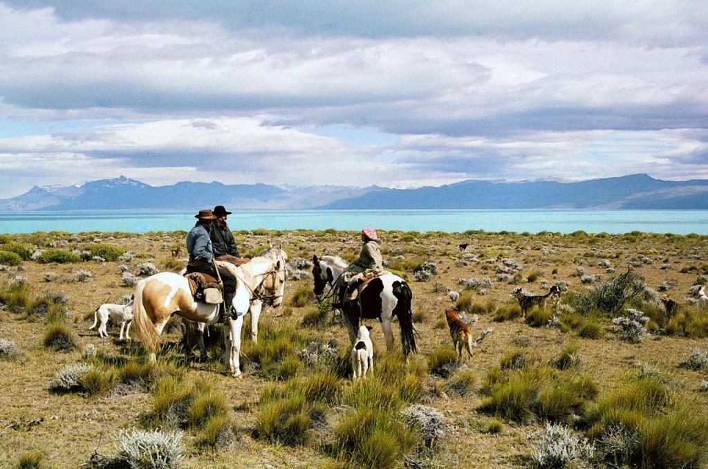 Gauchos et leurs chevaux